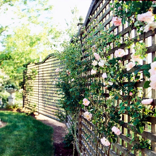Privacy in the garden - the structures and wooden fences privacy