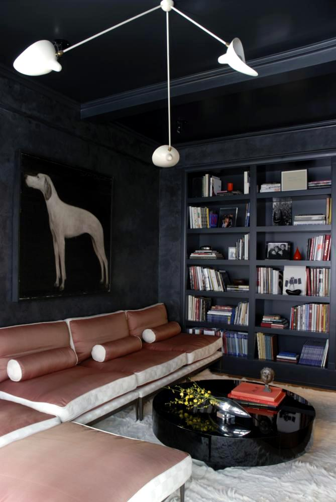 Walls with charcoal portrait of a hunting dog in modern - Interior design pic ...