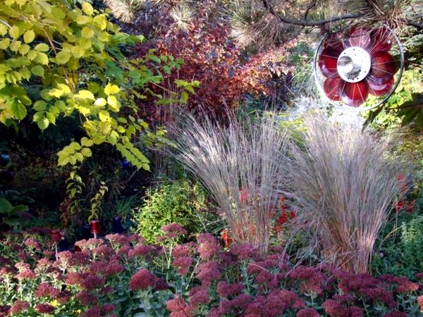 Preparing the garden for winter days Gardening in the