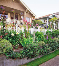 face-beautiful-garden-and-surprise-your-neighbors-and-passersby-0-676
