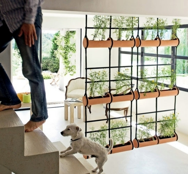 30 ideas for partitions for every home and every taste