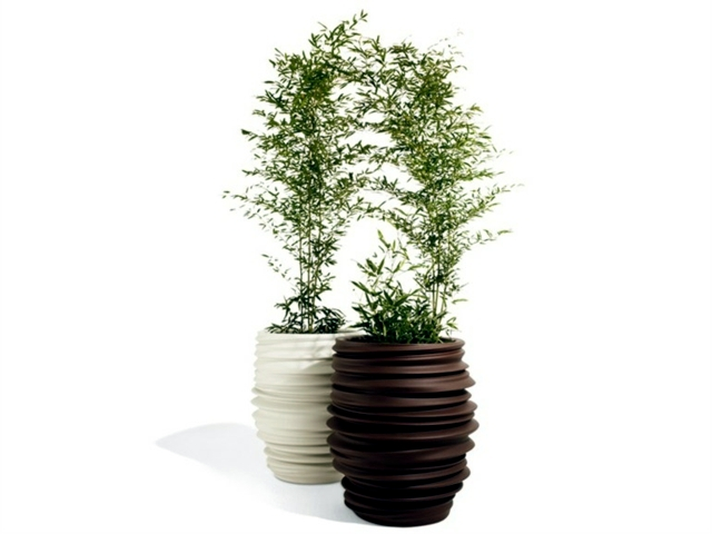 Ceramic Planter - is the asymmetrical shape in vogue?