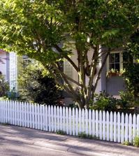 front-yard-with-white-picket-fence-and-trees-0-716