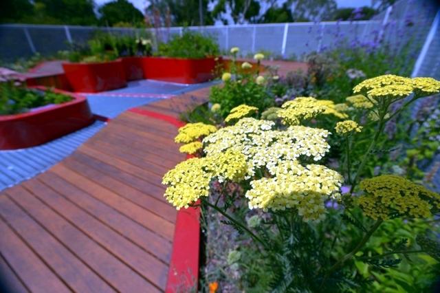 Terraces design - concept Environment Hassel