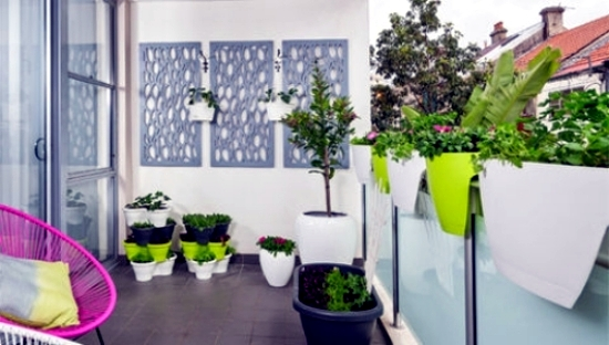 If You Want To Create A Vegetable Garden But Have Limited Space On The Balcony There Are Practical Solutions That Can Help Buy Vases Of Flowers With An