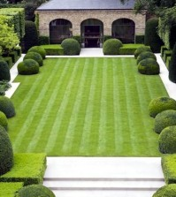 lawn-mowing-and-scarifying-tips-lawn-in-spring-0-772