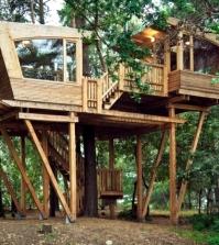 the-magic-tree-house-tree-space-0-773