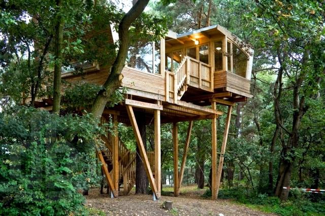 The magic tree house tree space