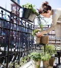 creating-a-herb-garden-on-the-balcony-tips-for-planting-and-maintaining-0-776