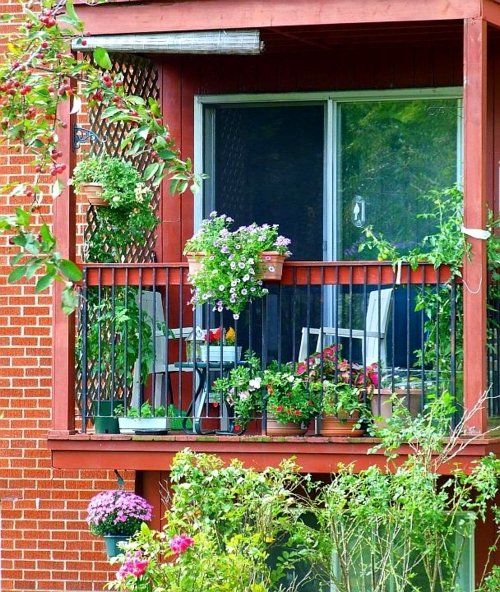Creating a herb garden on the balcony - Tips for planting and maintaining