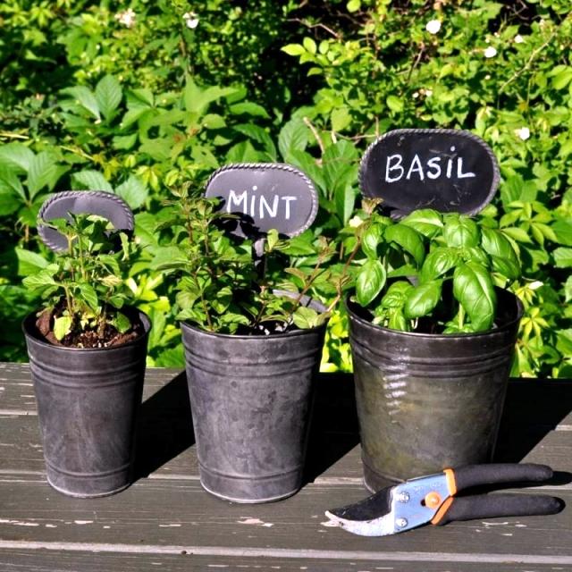 Design in the Garden - practical ideas for designing efficient pocket