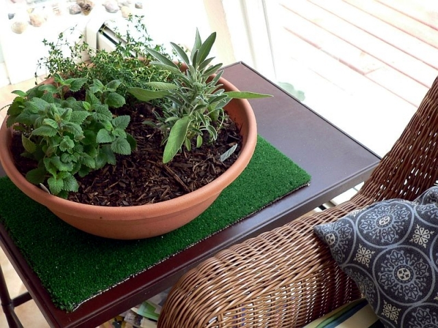 Creating a herb garden at home - What to consider
