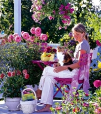 balcony-planting-flowers-colorful-oasis-in-the-cold-season-0-813