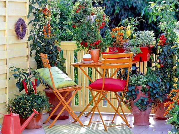 Balcony planting flowers colorful oasis in the cold for Fall balcony decorating ideas
