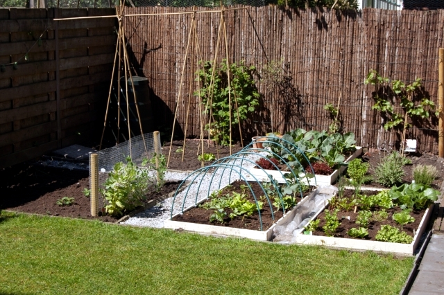 Design tips and ideas for small gardens what not to miss for Easy gardens to maintain