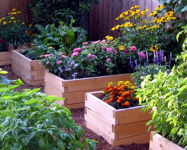 Design tips and ideas for small gardens - What not to miss?