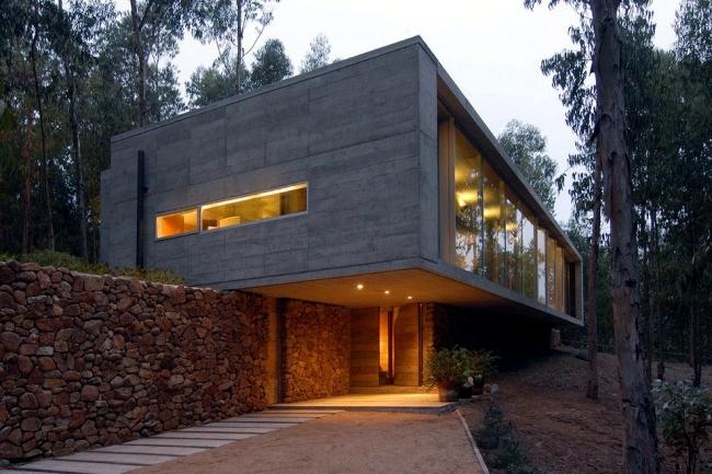 Flat roof house