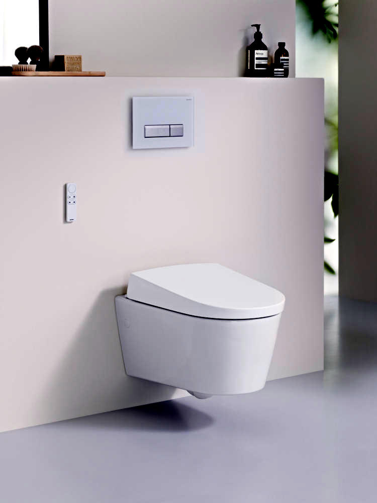 modern-bathroom-with-aqua-clean-sela-wc-0-841