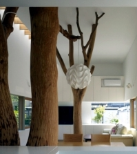 modern-house-built-in-the-garden-with-two-trees-of-sentimental-value-0-845