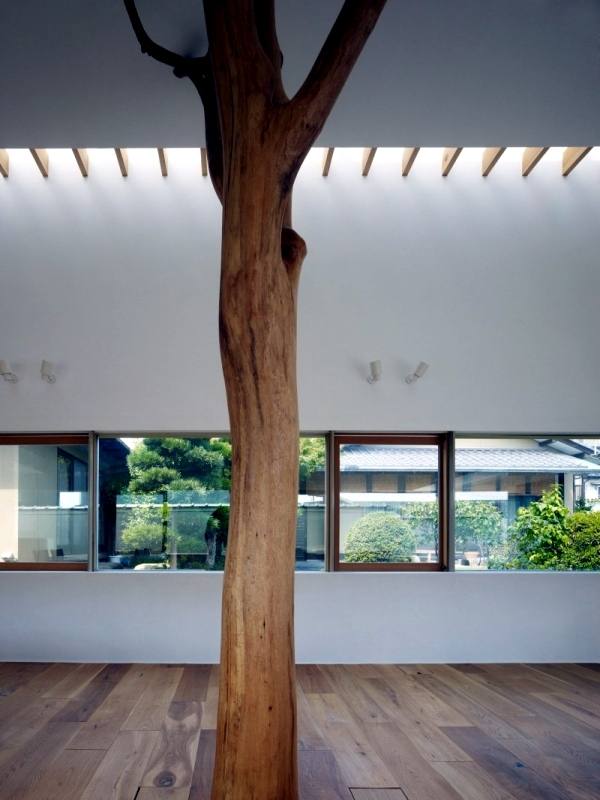 Modern house built in the garden with two trees of sentimental value