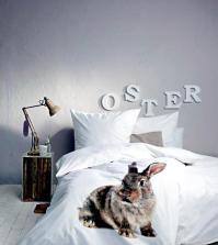 rabbit-bedding-for-easter-0-856