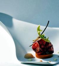 design-porcelain-plates-with-unusual-fluid-shapes-0-866