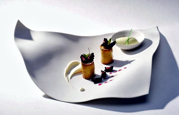 Design porcelain plates with unusual fluid shapes