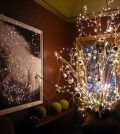 magic-christmas-lights-led-decorating-the-house-0-891