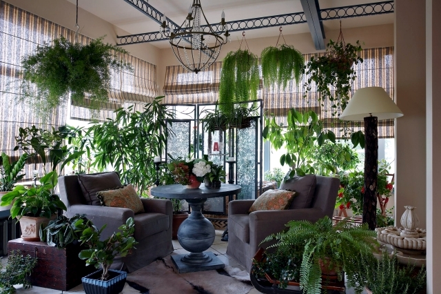 Caring For Plants In The Conservatory And 17 Design Ideas 2416 on Best Greenhouse Interiors