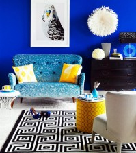 budgie-mural-0-907