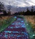 bike-lane-interactive-netherlands-shining-in-the-night-0-930