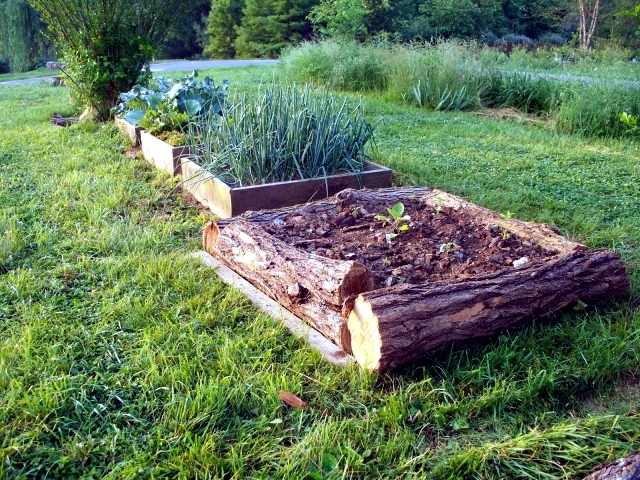 Raised beds to build furniture - 15 ideas from different materials
