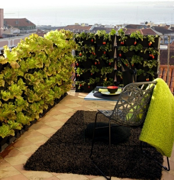 Vegetables on the balcony creating a raised bed garden interior design ideas ofdesign - Veggies that grow on balcony ...