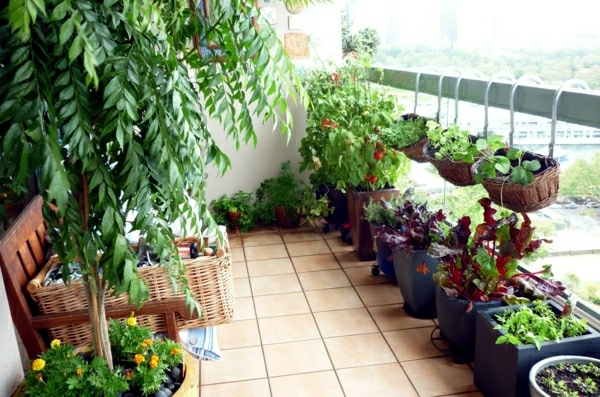 Vegetables on the balcony - Creating a raised bed garden