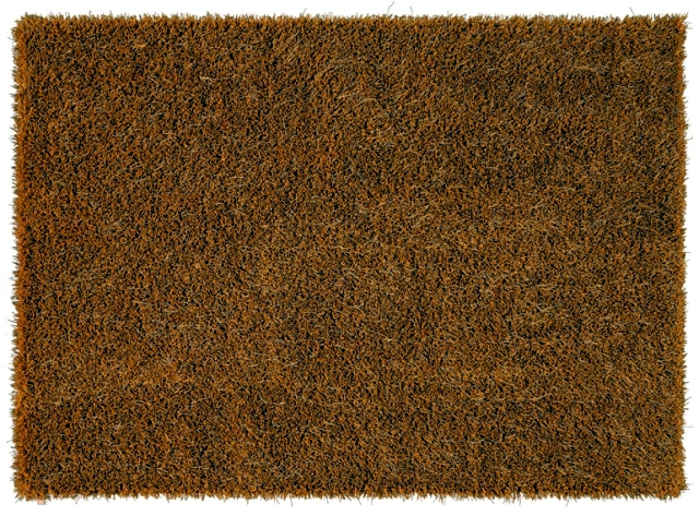 EyEcAtChEr incurred Room - Modern Shaggy Shag Rugs MOSS