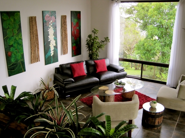 Benefits of Indoor Plants - Why are they so important to our house