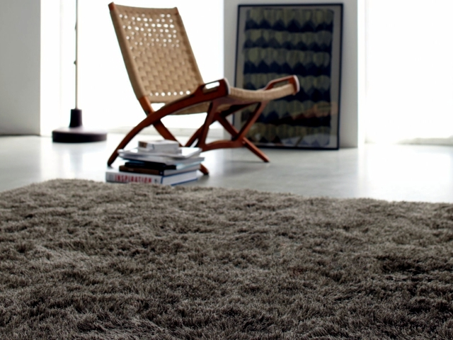 Shaggy Wool carpet creates a warm