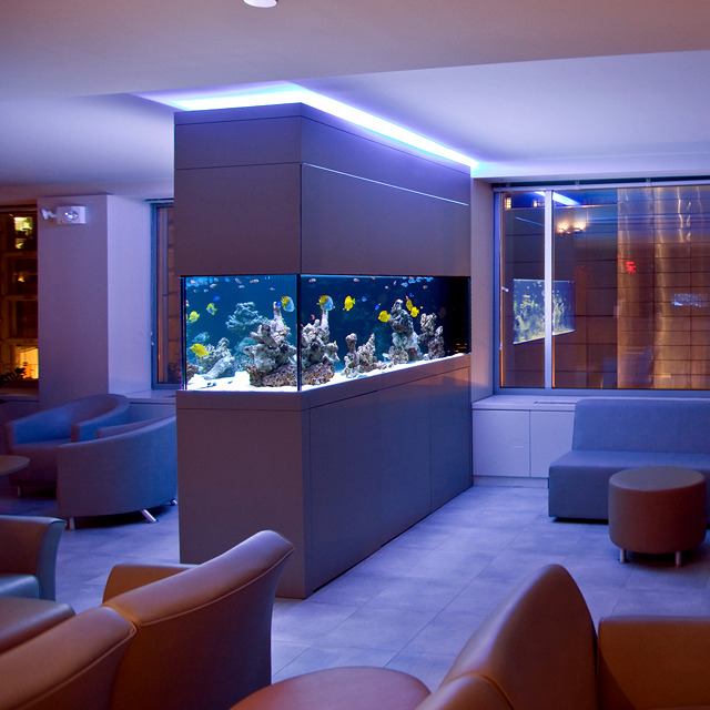 100 ideas integrate aquarium designs in the wall or in the ...