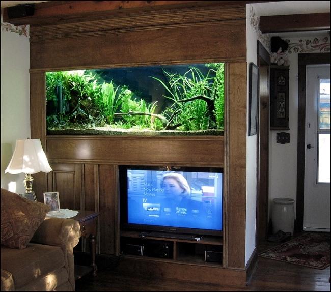 Living Room Setup Entertainment Center Aquarium