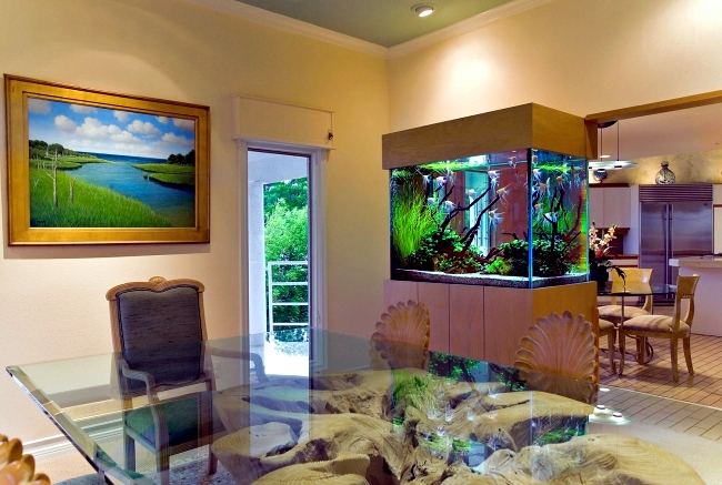 . 100 ideas integrate aquarium designs in the wall or in the living