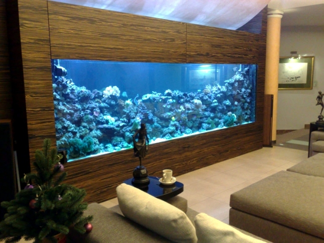 100 ideas integrate aquarium designs in the wall or in the for Aquarium interieur