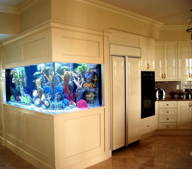 100 ideas integrate aquarium designs in the wall or in the for Fish tank built into wall