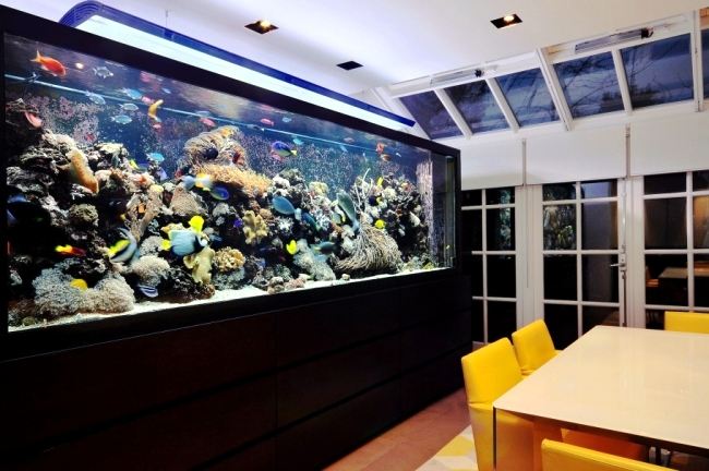 100 Ideas Integrate Aquarium Designs In The Wall Or In The Living Room Part 95