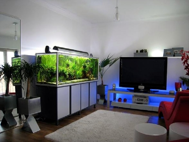 Merveilleux 100 Ideas Integrate Aquarium Designs In The Wall Or In The Living Room