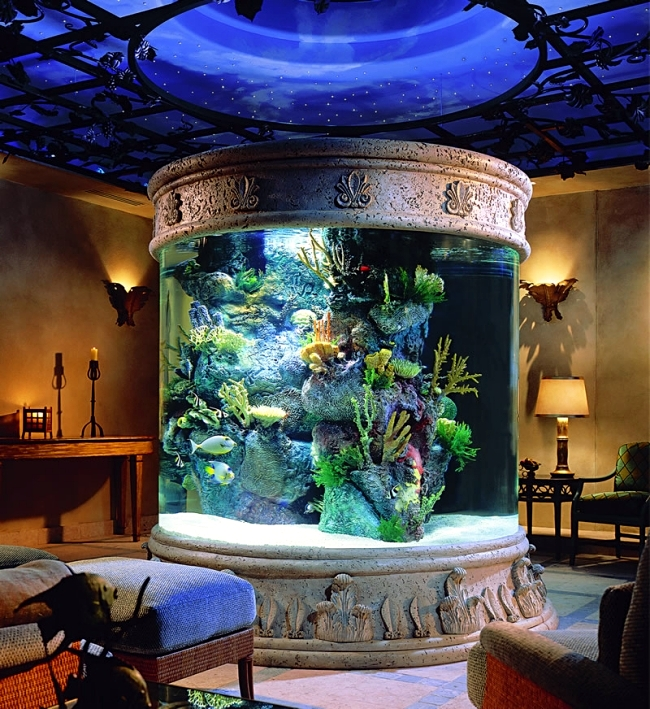 Large Aquarium With Stone Edges 100 Ideas Integrate Designs In The Wall Or Living Room