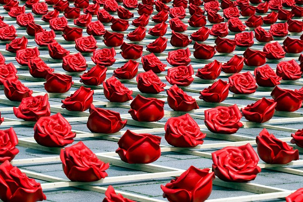 1000 Roses for Two Bridges Public art installation in the city