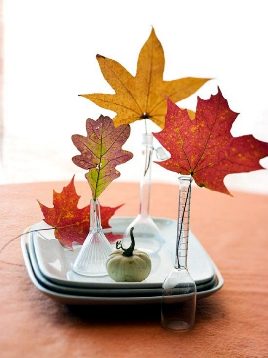 19 ideas for autumn decorations to make yourself enrich the interior