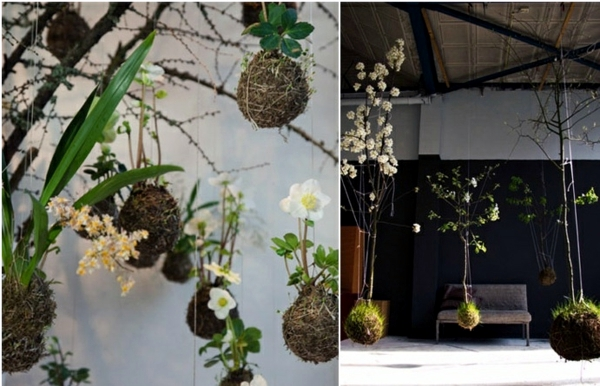 20 Ideas For Hanging Flower Pots Indoor Plants Exhibit