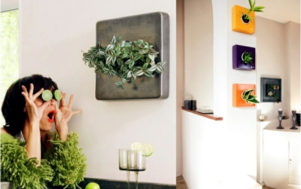 20 ideas for hanging flower pots - indoor plants exhibit creative