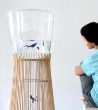 aquarium-and-bird-in-a-cage-design-the-concept-duplex-0-1066634629